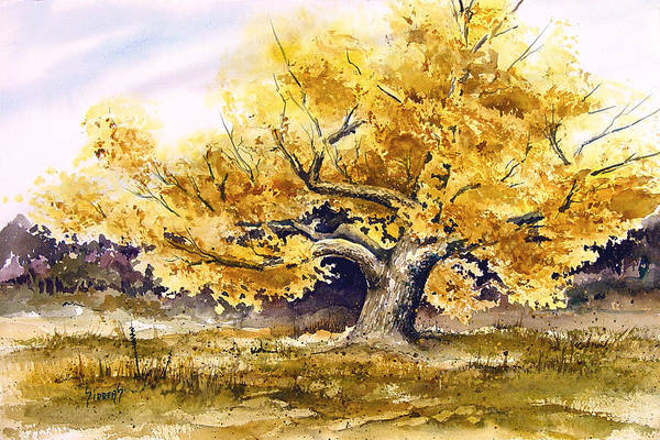 Painting - Woodward Cottonwood by Sam Sidders