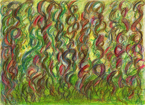 Mixed Colors Drawing - Wooing Nature by Kelly K H B