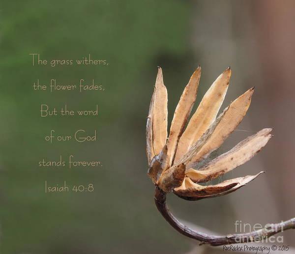 Rader Photograph - Word Of God Stands Forever by Roe Rader