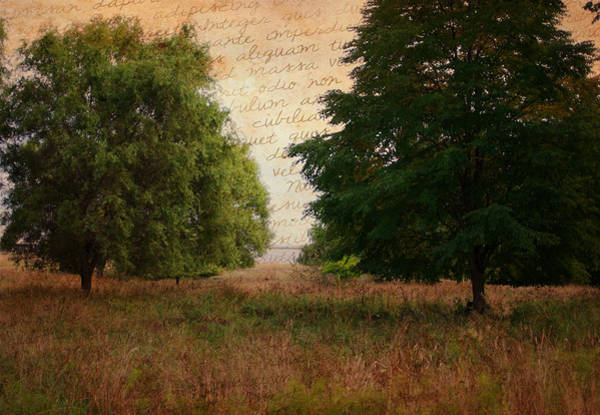 Photograph - Words Left Unsaid by Marilyn Wilson