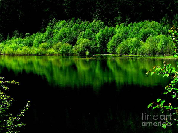 Patzer Photograph - Work In Green by Greg Patzer