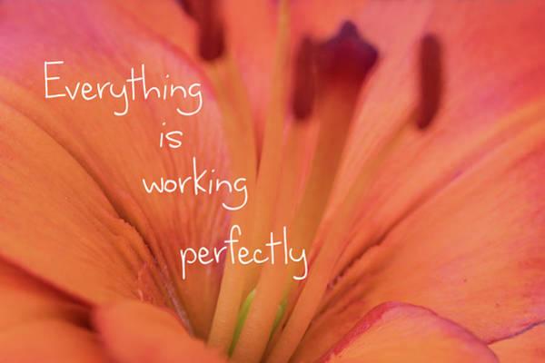 Saying Photograph - Working Perfectly by Ramona Murdock