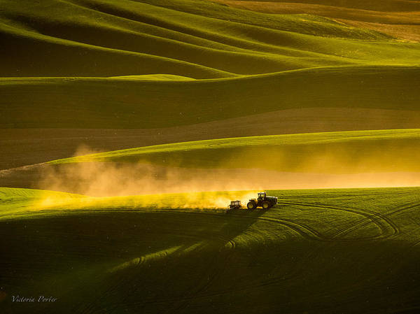 Photograph - Working The Fields In The Palouse by Victoria Porter