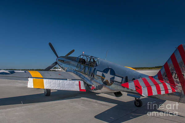 Photograph - World War II Mustang by Dale Powell