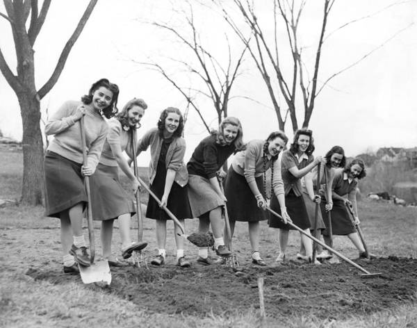 Photograph - World War Two Victory Garden by Underwood Archives