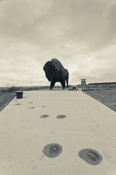 North Dakota Photograph - Worlds Largest Buffalo Statue by Panoramic Images