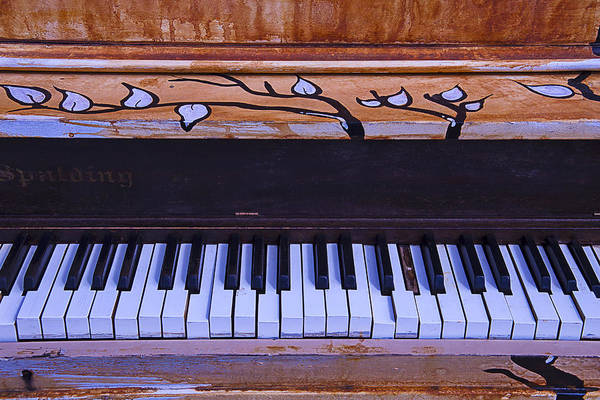 Compose Wall Art - Photograph - Worn Funky Piano by Garry Gay