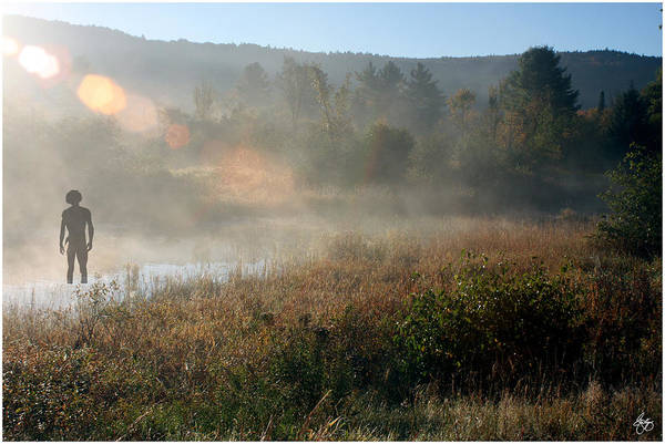 Photograph - Worshipping The Dawn by Wayne King