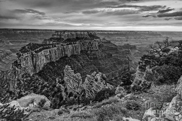 Wall Art - Photograph - Wotan's Throne North Rim Grand Canyon National Park - Arizona by Silvio Ligutti