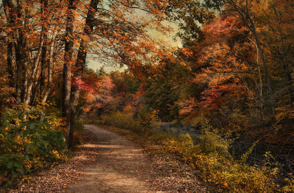 Photograph - Wrapped In Autumn by Robin-Lee Vieira