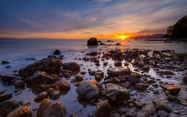 Photograph - Wreck Beach by Alexis Birkill