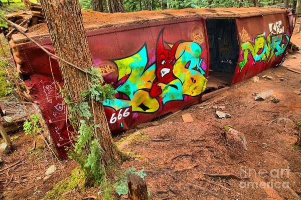 Photograph - Wrecked Box Car Along The Cheakamus by Adam Jewell