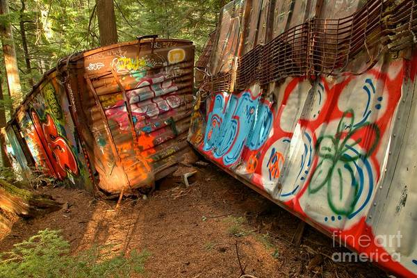 Photograph - Wrecked Whistler Trains by Adam Jewell