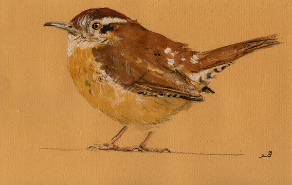Bird Watercolor Painting - Wren Bird by Juan  Bosco