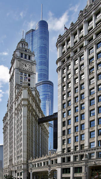 Wall Art - Photograph - Wrigley And Trump In Harmony by Christine Till