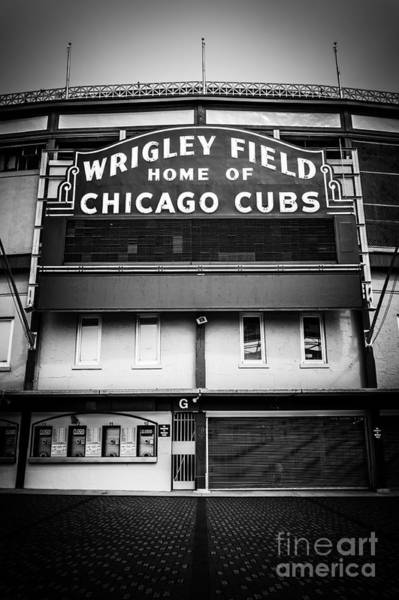 Sears Tower Photograph - Wrigley Field Chicago Cubs Sign In Black And White by Paul Velgos