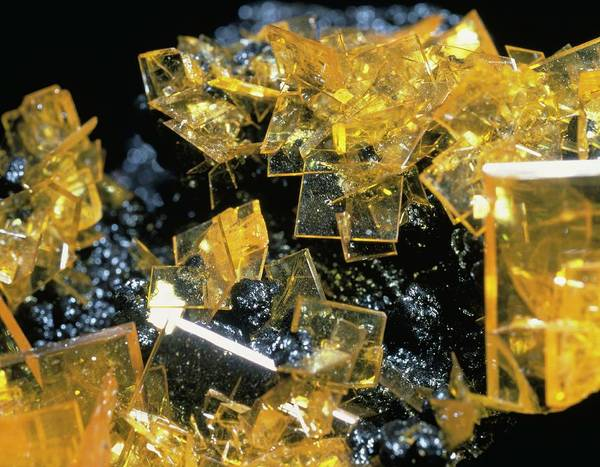 Lead Mine Wall Art - Photograph - Wulfenite by Natural History Museum, London/science Photo Library