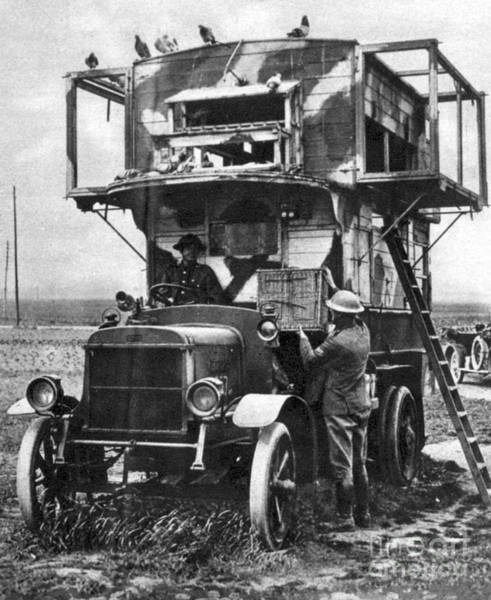 Photograph - Wwi British Carrier Pigeon Loft by Photo Researchers