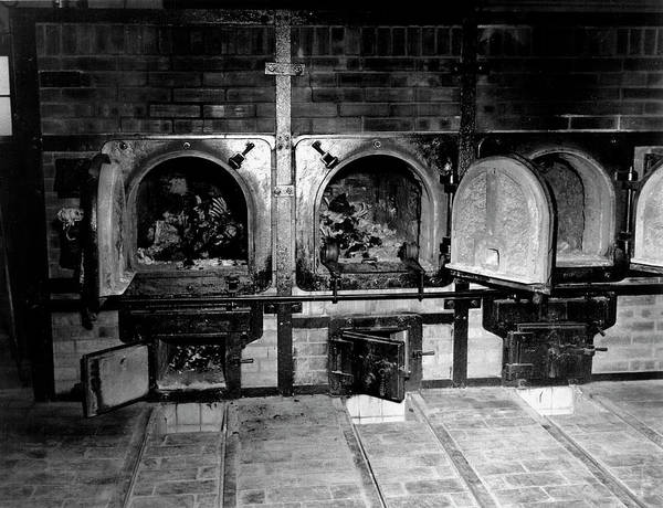 Holocaust Photograph - Wwii Nazi Death Camp Crematorium by Us Army/science Photo Library