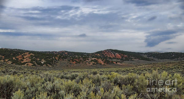 Photograph - Wyoming Landscape II by Donna Greene