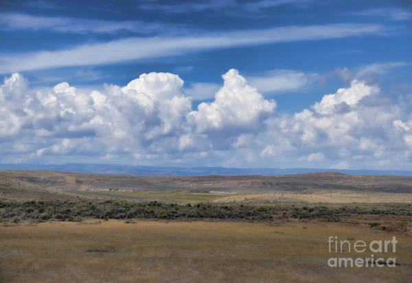 Photograph - Wyoming Landscape Iv by Donna Greene