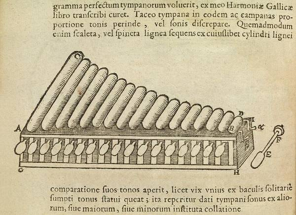 Manuscript Photograph - Xylophone by Middle Temple Library