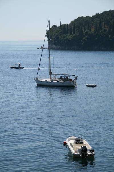 Photograph - Yachts At Anchor by Susan Leonard