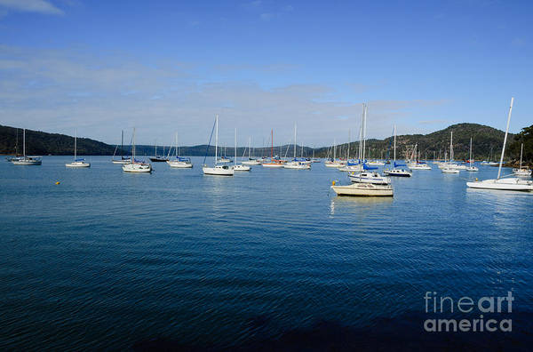 Photograph - Yachts Moored In A Quiet Estuary.  by David Hill