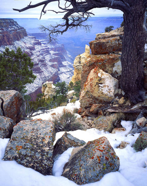 Photograph - Yaki Point  by Ray Mathis
