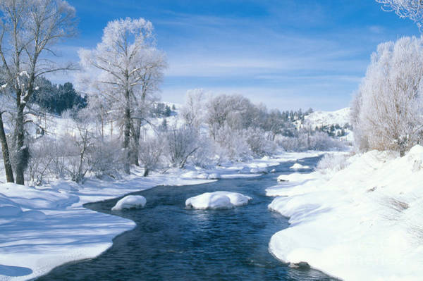Photograph - Yampa River Colorado by James Steinberg