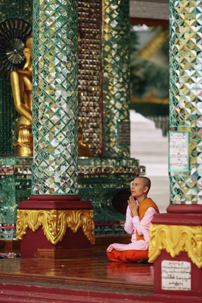 Shaved Head Photograph - Yangon, Myanmar by Gavin Gough