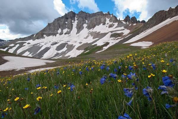 Photograph - Yankee Basin Summer by Cascade Colors