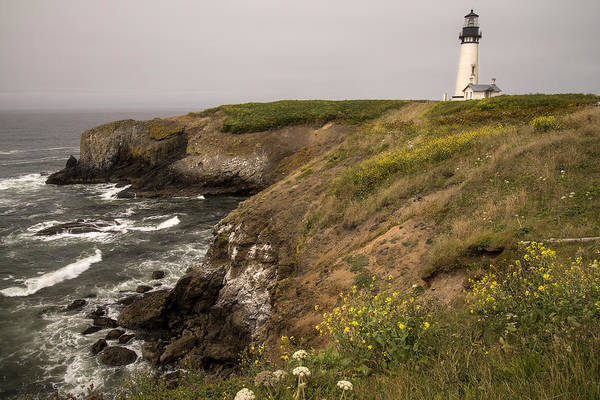 Photograph - Yaquina Head Lighthouse by Lee Kirchhevel