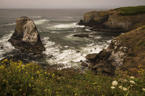 Photograph - Yaquina Head View 1 by Lee Kirchhevel
