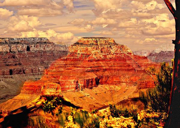 Photograph - Yavapai Grand Canyon by Bob and Nadine Johnston
