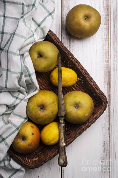 Menu Photograph - Yellow Apples by Jelena Jovanovic