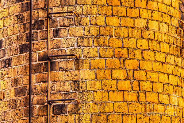 Photograph - Yellow Brick by Susan Cole Kelly