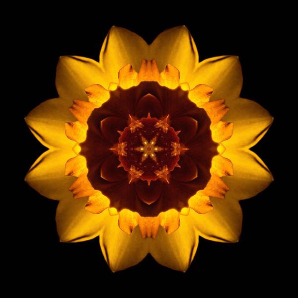 Photograph - Yellow Daffodil I Flower Mandala by David J Bookbinder