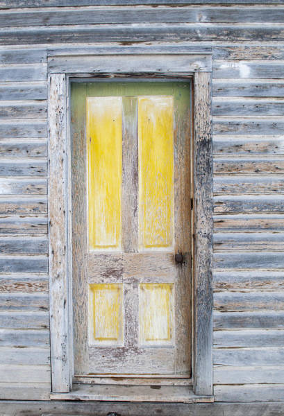Photograph - Yellow Entry by Fran Riley