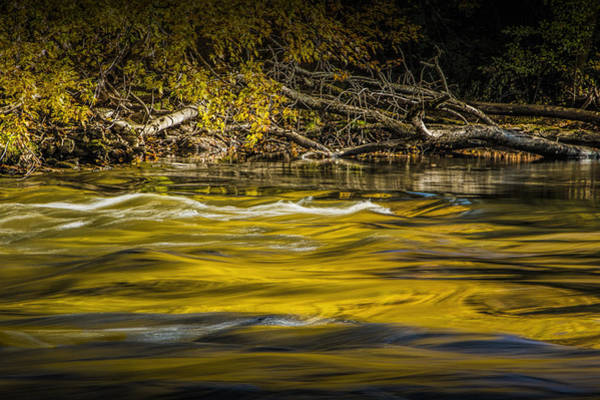 Photograph - Yellow Fall Reflections On The Thornapple River by Randall Nyhof