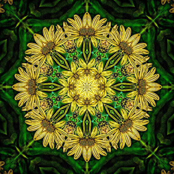 Photograph - Yellow Green Flower Mandala by Beth Sawickie