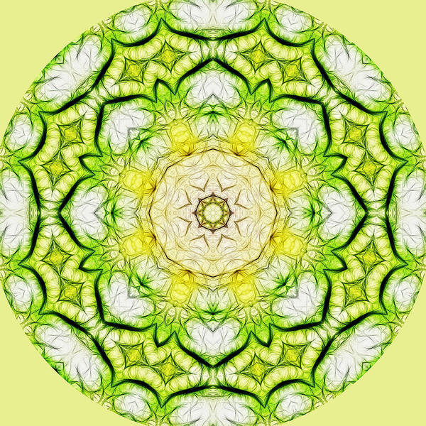 Digital Art - Yellow Green Mandala by Beth Sawickie