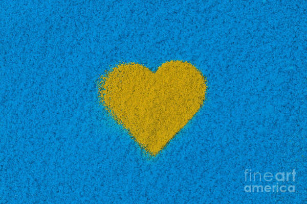 Photograph - Yellow Heart by Tim Gainey