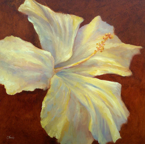 Painting - Yellow Hibiscus by Carolyn Jarvis