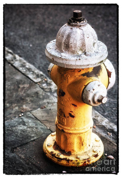 Water Hydrant Photograph - Yellow Hydrant by John Rizzuto
