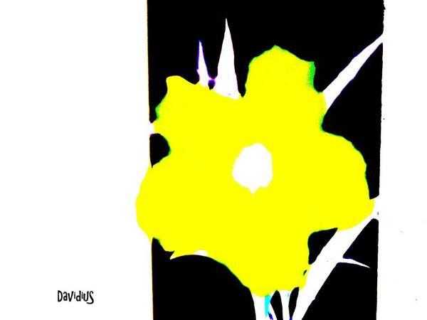 Photograph - Yellow Jack W Logo by David Clark