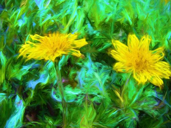 Photograph - Yellow Jewels by Alice Gipson