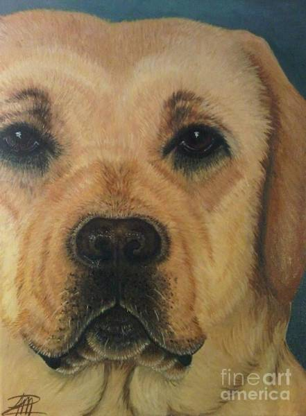 Painting - Yellow Lab by Ana Marusich-Zanor