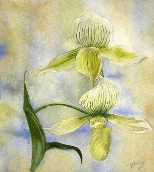 Painting - Yellow Ladyslipper Orchid by Alfred Ng