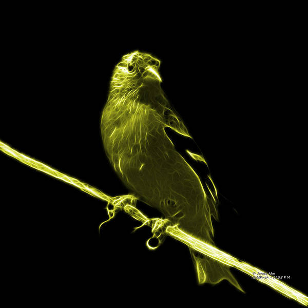 Digital Art - Yellow Lesser Goldfinch - 2235 F by James Ahn